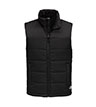 NF0A529A - Everyday Insulated Vest